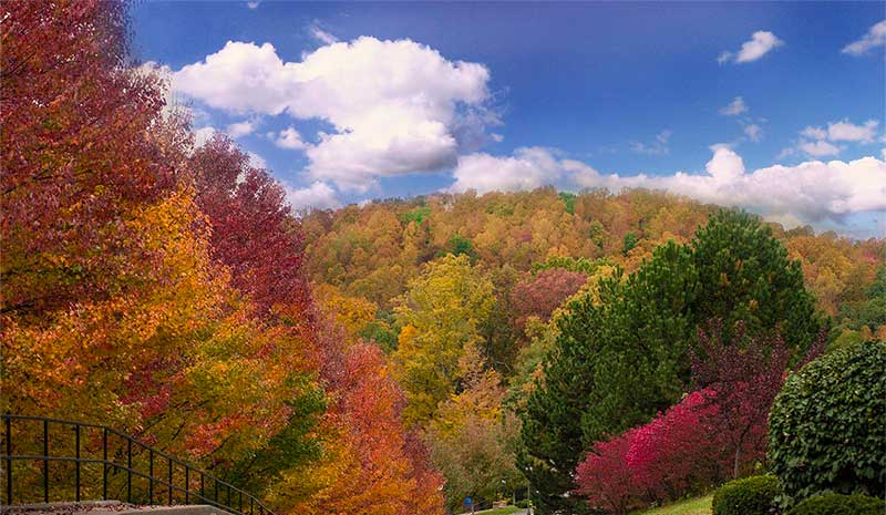 Appalachian Bible College - Fall Foliage